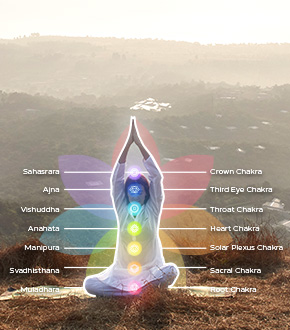 What are the 7 Chakras in our Body ?